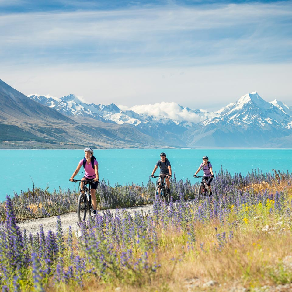 Photo credit (Miles Holden). Location displayed (Lake Pukaki, Canterbury).