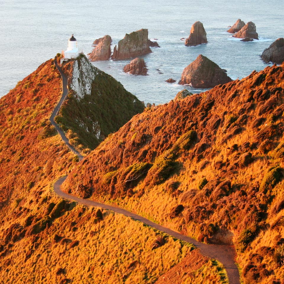 Location displayed (Nugget Point, Southland).