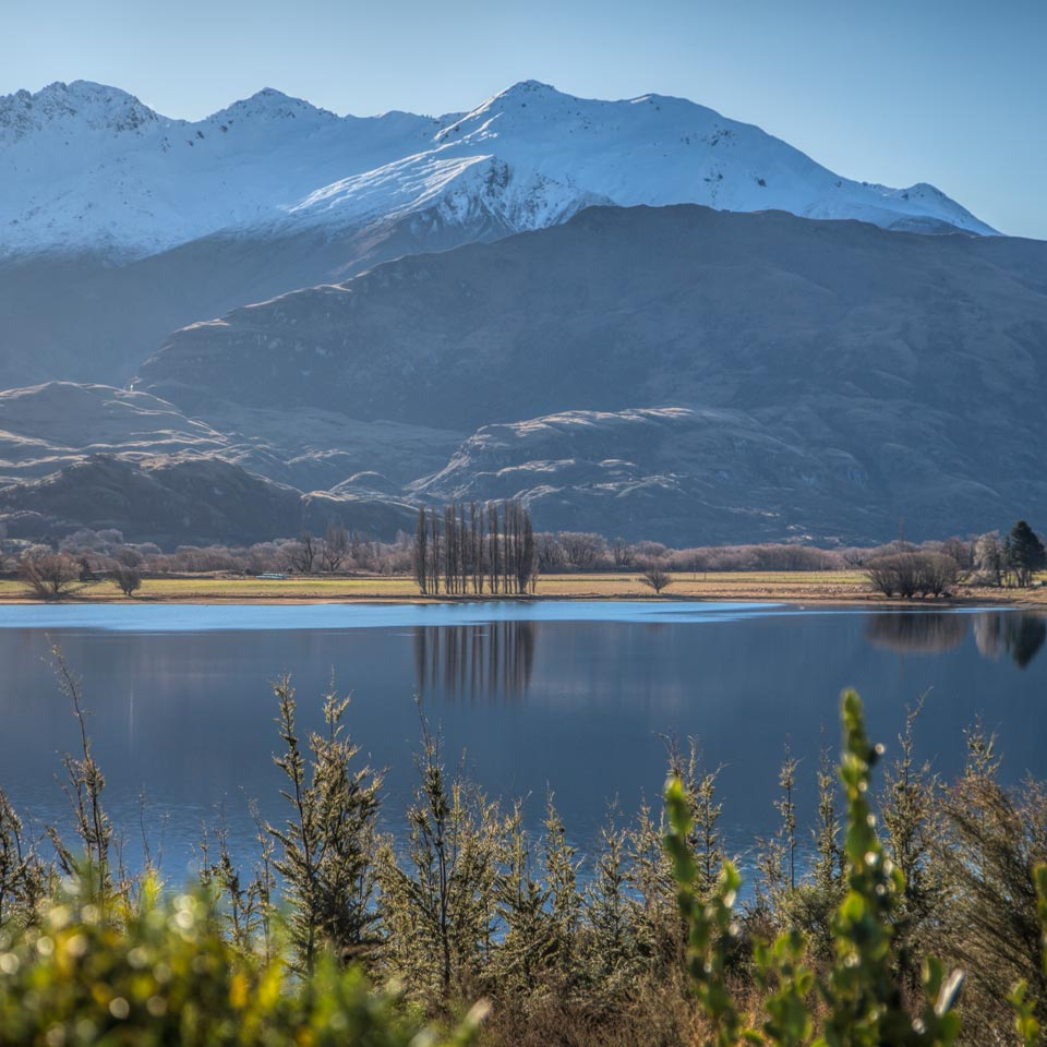 Photo credit (Major Domo). Location displayed (Piwakawaka Lodge, Wanaka).