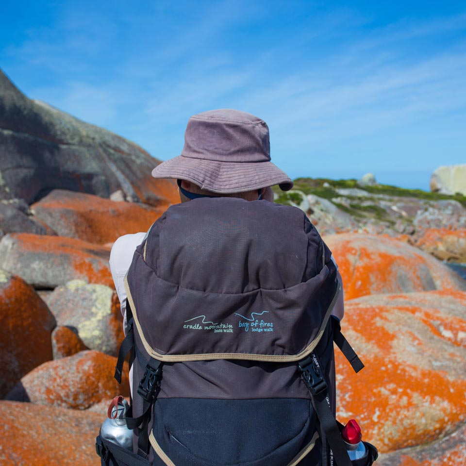 Photo credit (Tourism Tasmania). Location displayed (Great Walks of Australia (Bay of Fires Lodge Walk), Tasmania).