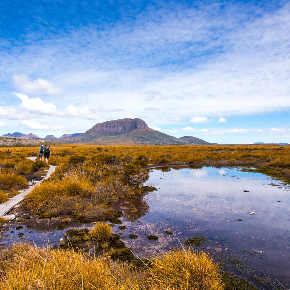 Photo credit (Tourism Australia). Location displayed (Cradle Mountain Huts Walk).